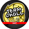 The Team Skull Takeover Emblem (Guzma)